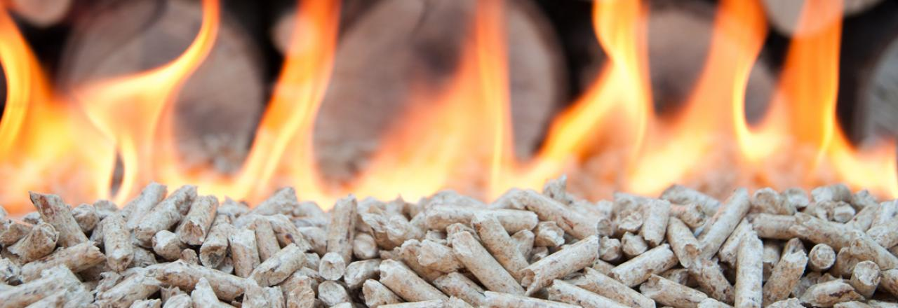 Early Buy Wood Pellets