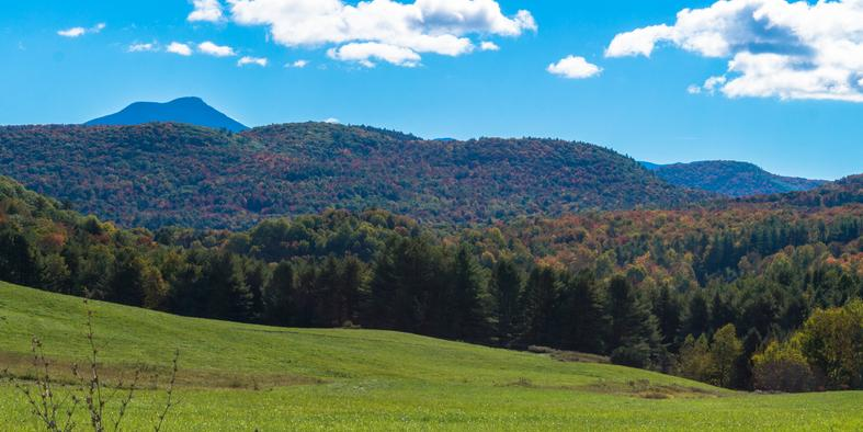 Camels Hump View from Williston